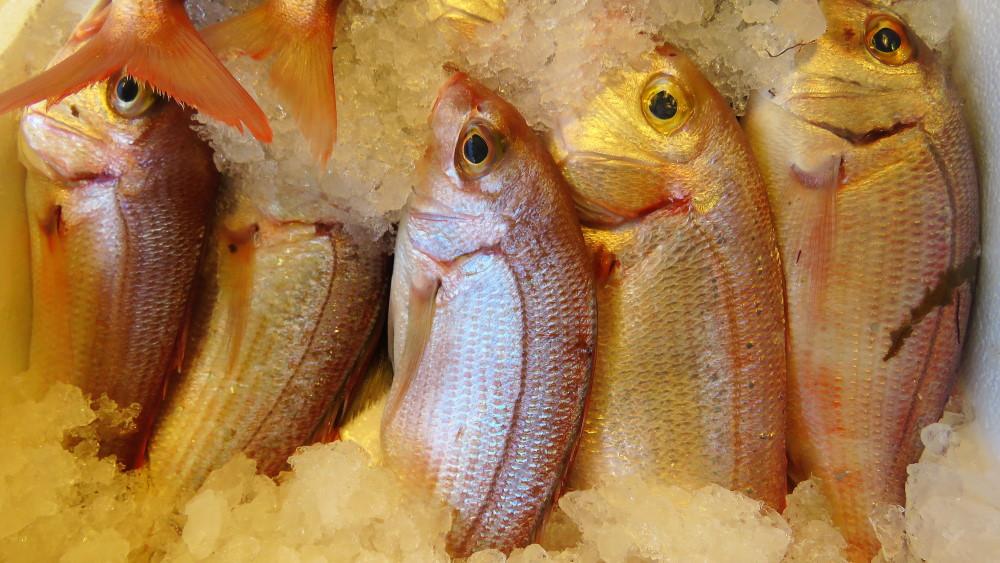 Πως διαλέγουμε το φρέσκο ψάρι ;
