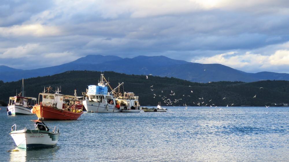 Αλιευτικά ελληνικά καΐκια στον Ευβοϊκό